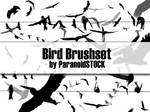Bird Brushset
