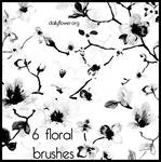 6 ps floral brushes