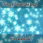 Disneys Frozen Snowflakes