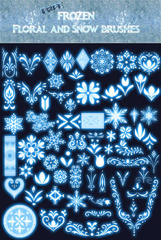 Disney Frozen Brushes2