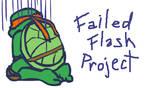 Flash Project Failed again