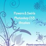 flowers and swirls CS3 brushes