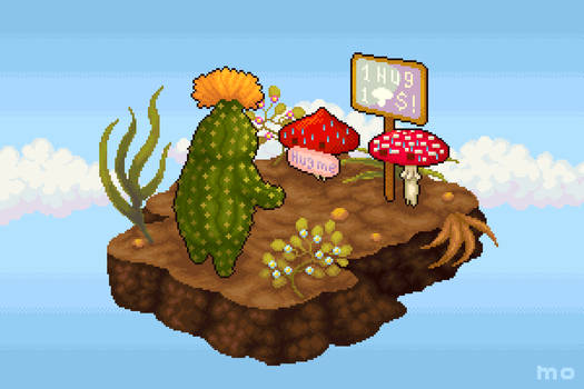 Mushrooms in desert