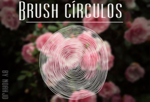 Circles /brush/ by ephyreia