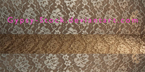 Lace Fabric Textures