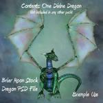Single Dragon PSD File