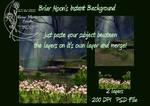 Forest Pond 2 Layer PSD BG