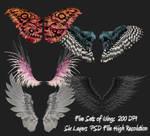 PSD Wings Package