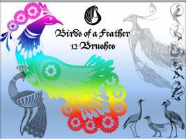 Birds of a Feather by Kekilei