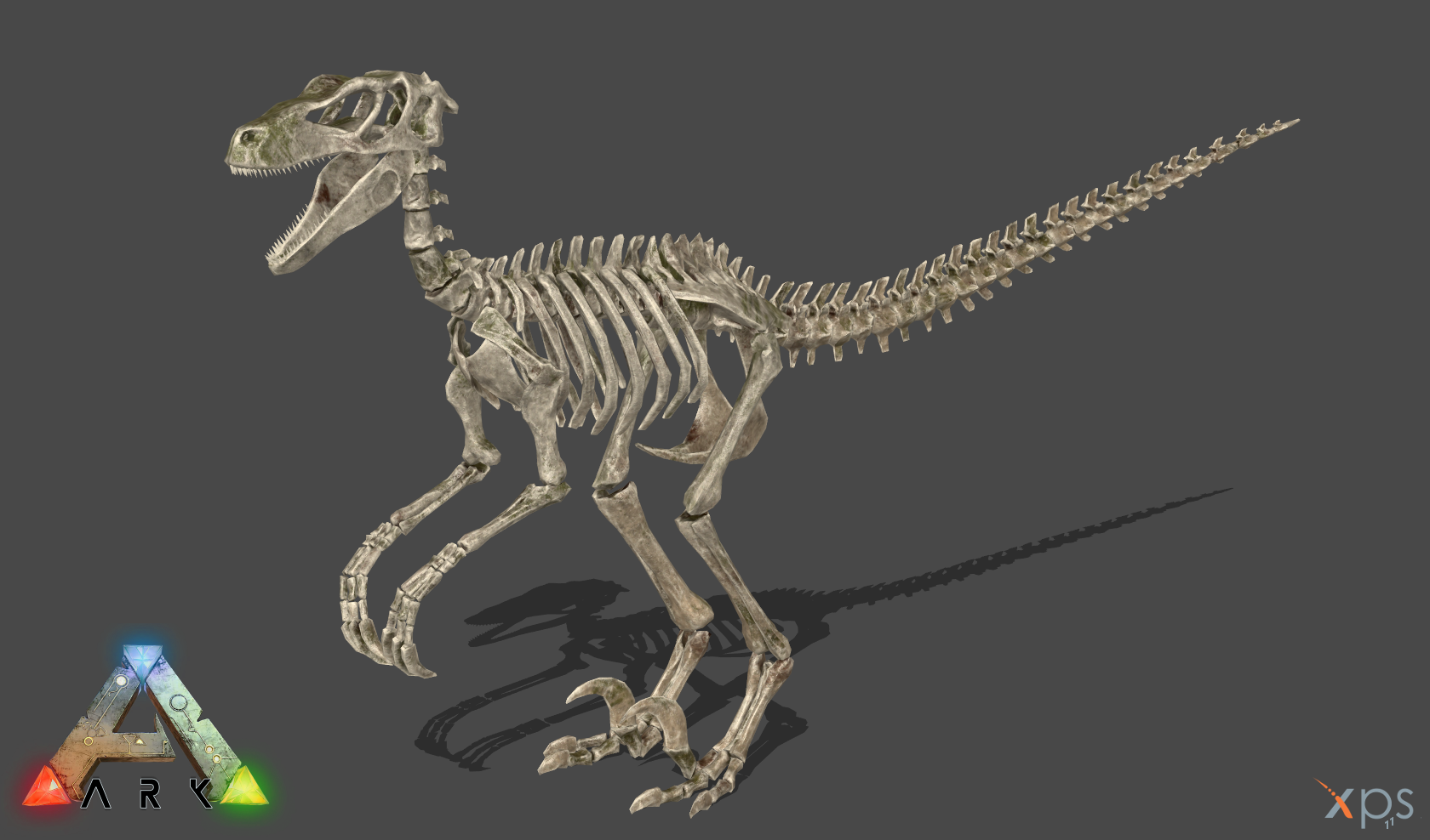 [ARK:SE] Skeletal Raptor by Phelcer on DeviantArt