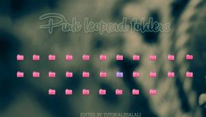 Pink Leopard Folders