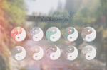 Yin Yang [ICO-PNG-AVATAR]