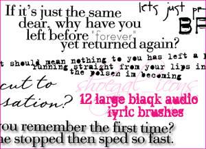12 Blaqk Audio Lyrical Brushes