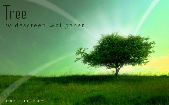 Tree-Widescreen Wallpaper by nurutheone