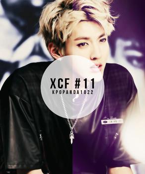 XCF #11 Kpopanda1022
