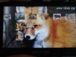 PSP Fox Theme by Kudzuking