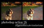 Action dog 24