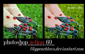 photoshop action 69 by lilypeachlovs