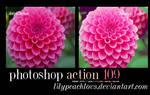 Action 109 Lilypeachlovs