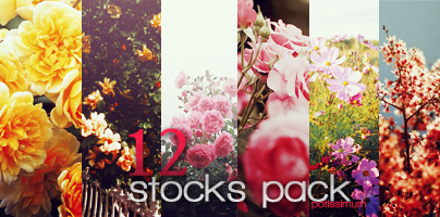 Stockpack#potissimum by Bellaws