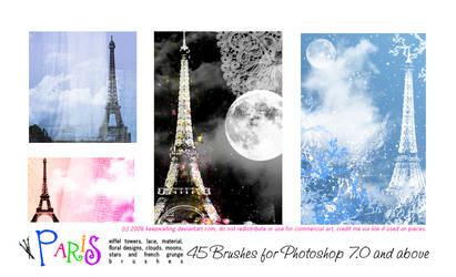 PARIS LIGHTS - PS.7+ Brushes