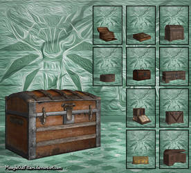 The Witcher 3   Container By Moogleoutfitters