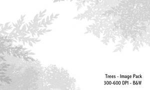Trees- 300-600DPI