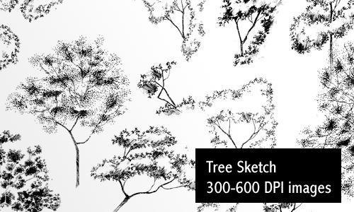 Sketch Trees - Low Res by screentones