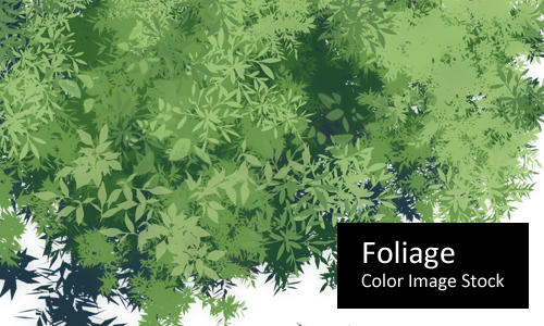 Foliage - Color Stock