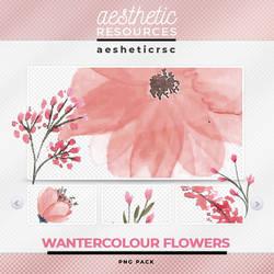 Watercolour Flowers  [PNGs]