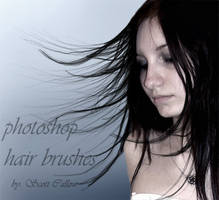 hair brushes by Shadowss-stock