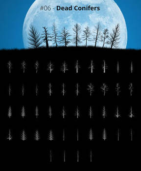Tree Silhouettes vol.6 - Dead Conifers
