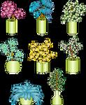 Ornamento-floral-37-colores-degradados