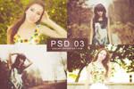 PSD 03 | ASSJAY (revised)