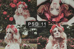PSD 11 | ASSJAY