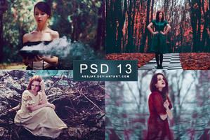 PSD 13 | ASSJAY by assjay