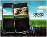 On the go: Grass