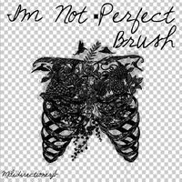 Im Not Perfect Brush by MiliDirectionerJB