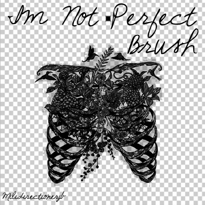 Im Not Perfect Brush by MiliDirectionerJB