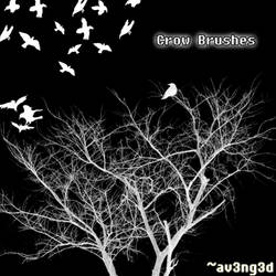 Crow Brushes by aV3nG3d