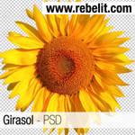Girasol PSD