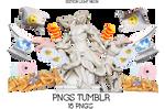 Pngs Tumblr 7u7