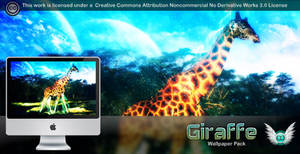 Giraffe Wallpaper Pack