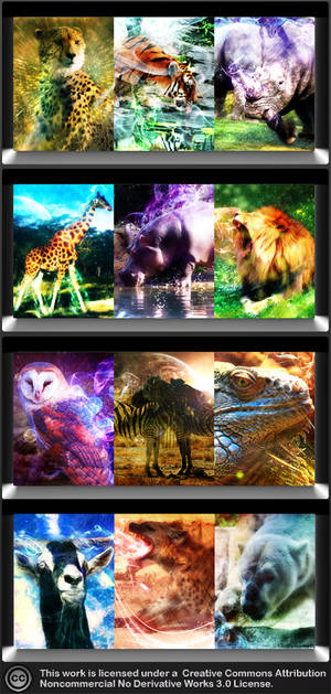 Samsung Corby Wildlife WP Pack