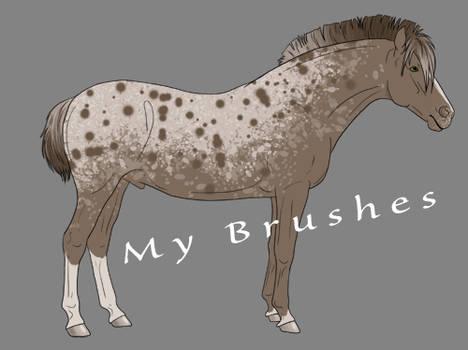 Jager's Brush Set