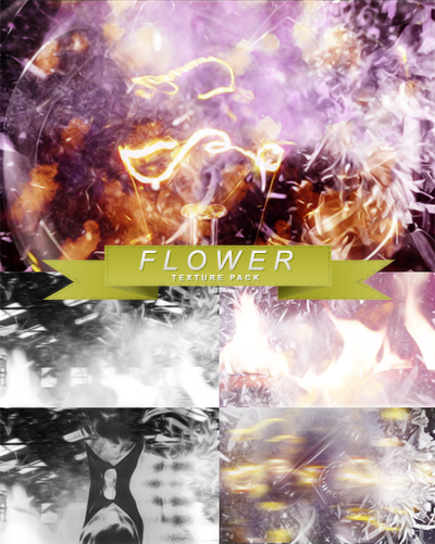 https://orig12.deviantart.net/85c4/f/2015/150/c/d/flower___texture_pack_by_selkkie-d8vbjkp.png