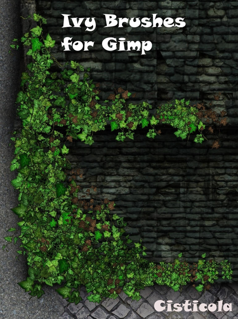 Ivy Brushes for Gimp by Cisticola on DeviantArt