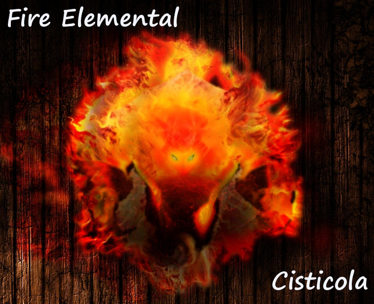 Fire Elemental by Cisticola