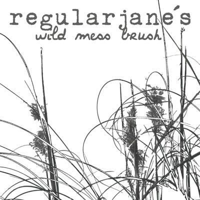 Brush Wild Mess x1 by regularjane