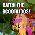 Catch the Scootaloos